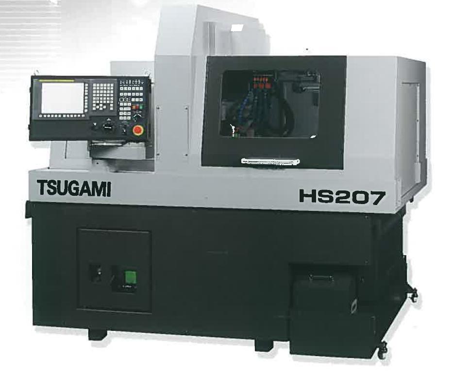 HS207E